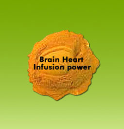 brain-heart-infusion-powder-250x250